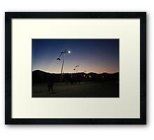 stray dogs, barra de lagoa, brazil Framed Print