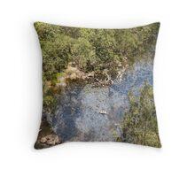 Gloucester River Throw Pillow