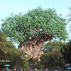 the tree of life in orlando florida  by david burton