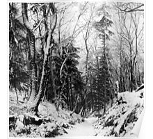 winter landscape in black and white Poster