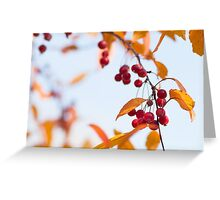 Fresh. Greeting Card