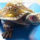 Turtle by Maggie Lee