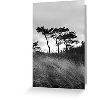 """Trees and Grass"" Greeting Card"