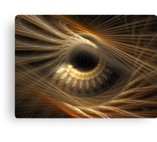 'The Story In Your Eyes' Canvas Print