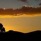 sunset silouhette by assh0le