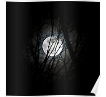 Moon in Trees Poster