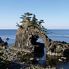 Shrine Island near Wajima on the Noto Peninsula, Japan. by johnrf