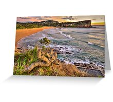 Solitary - Avalon Beach - The HDR Experience Greeting Card