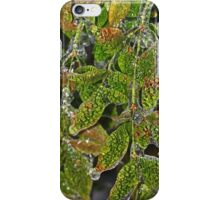 Alligator Holly iPhone Case/Skin