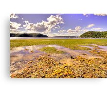 Low Tide - Palm Beach - The HDR Experience Canvas Print