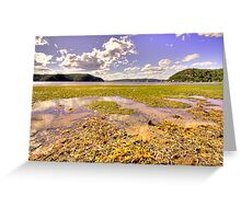 Low Tide - Palm Beach - The HDR Experience Greeting Card