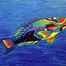 Parrot fish by maggie326