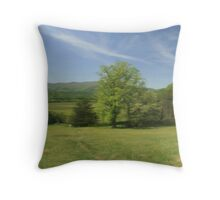 Country Dreams Throw Pillow