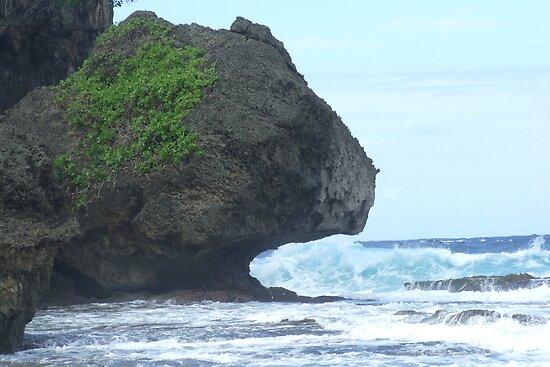 Rock eating water on Christmas Island by Huey