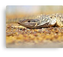 You want some? Canvas Print