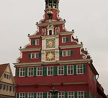 German Town Hall by Duncan Payne