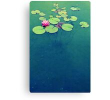 Lily Pond Blues Canvas Print