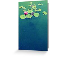 Lily Pond Blues Greeting Card