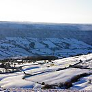 Views of the North Yorks Moors National Park #4 by Trevor Kersley