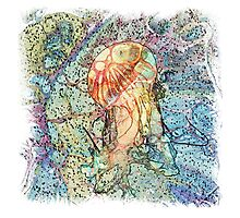 The Atlas Of Dreams - Color Plate 90 Photographic Print