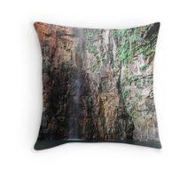 Outback Cooler Throw Pillow