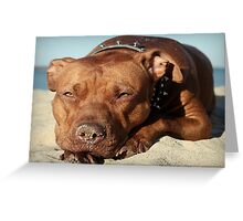 Sandy Nose Greeting Card