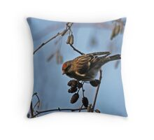 Seedeating Throw Pillow