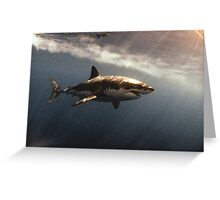 Great White Watercolours Greeting Card