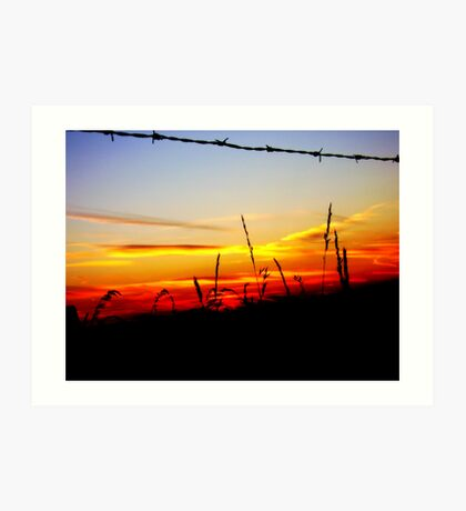 a wire to the light Art Print