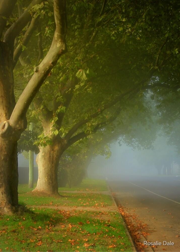 The fair luminous mist ... by Rosalie Dale
