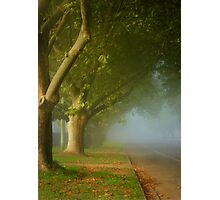 The fair luminous mist ... Photographic Print