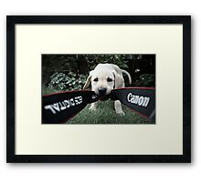 Buddy fancies himself a photographer! Framed Print