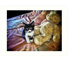 Teddy Cat In Bed Art Print
