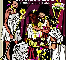 "HIP-HOP ICONS: BIG DADDY KANE ""LONG LIVE THE KANE"" by S DOT SLAUGHTER"