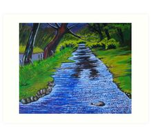 Stream in the garden of Blarney Castle, County Cork, Irish Republic Art Print
