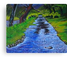 Stream in the garden of Blarney Castle, County Cork, Irish Republic Canvas Print