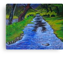 Stream in the garden of Blarney Castle, County Cork, Irish Republic Canvas Print