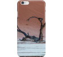 Deadvlei iPhone Case/Skin