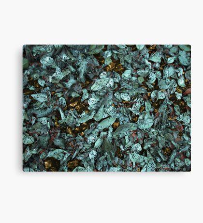 Patina Leaves Canvas Print
