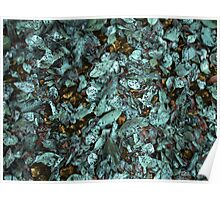 Patina Leaves Poster