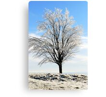 Alone in the Freezing Cold Canvas Print