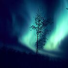 Curtains of Light -The Aurora Borealis - View 2 by Harry Snowden