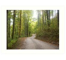 The Long and Windy Road Art Print