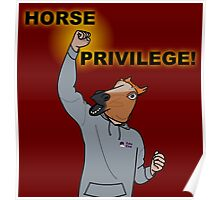 HORSE PRIVILEGE! My life as a teenage horse skit t-shirt Poster