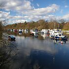 River Leven in Spring by Susan Dailey