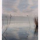 Lake IV by Vivi Kalomiri