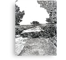 The road at Torrey Pines Reverve. Drawing Picture Canvas Print