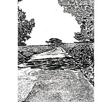 The road at Torrey Pines Reverve. Drawing Picture Photographic Print
