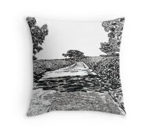 The road at Torrey Pines Reverve. Drawing Picture Throw Pillow