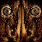 Scary face by jimmy hoffman
